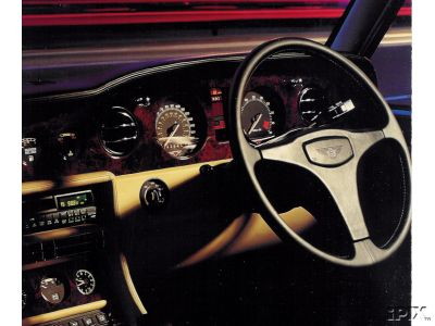 Here's a pic of the steering wheel I'm looking for.